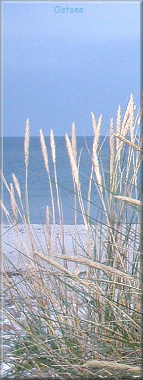 Ostseestrand